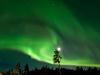 20120130_finnland_020