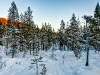 20120201_finnland_004
