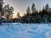 20120201_finnland_005