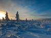20120203_finnland_007