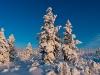 20120203_finnland_013