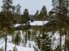 20130310_finnland_14